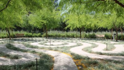 Top 5 Myths About Landscape Architects