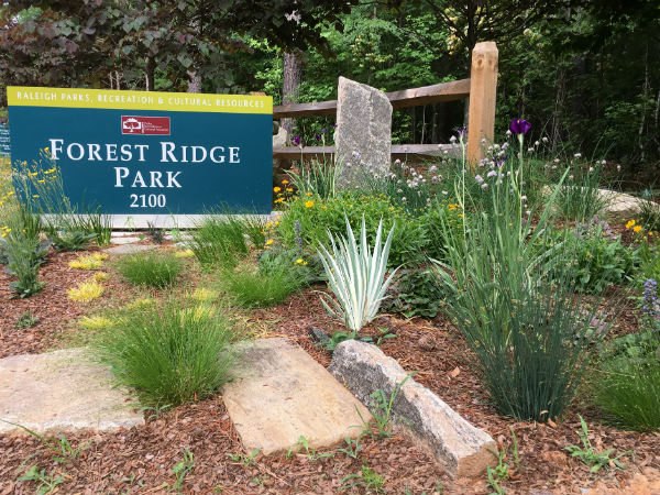 forest ridge park sign and plantings